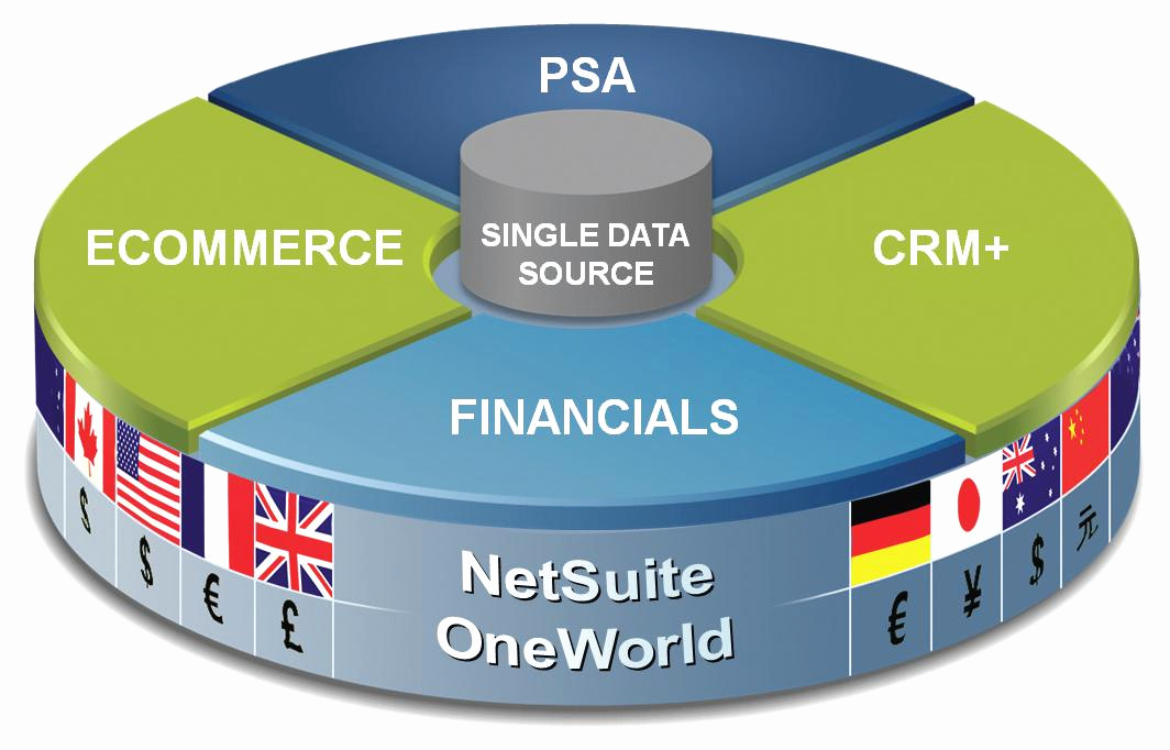 Openair Timesheet or Netsuite the Cloud Erp solutions