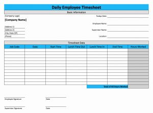 Daily Employee Timesheet Template and Daily Timesheet Template for Free Download