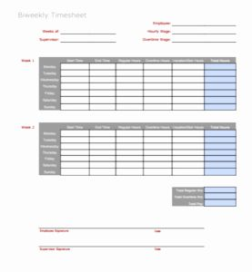 Printable Bi Weekly Time Sheets or 3 Timesheet Templates to Pay Employees with Ease