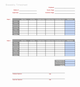 Bi Weekly Time Sheets Printable