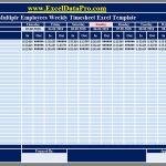 Timesheet Template for Multiple Employees and Download Multiple Employees Weekly Timesheet Excel