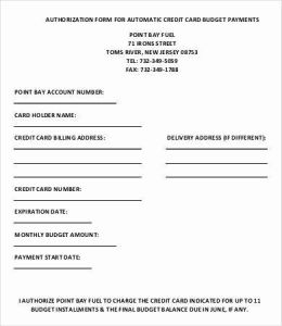 Credit Card Budget Timesheet and Credit Card form Template 9 Free Sample Example format