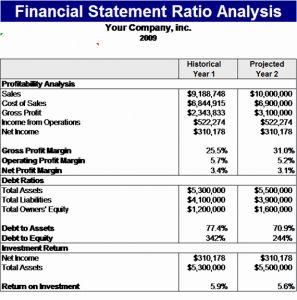 Financial Statement Analysis Timesheet Of Financial Statement Ratios Template Microsoft Excel Template